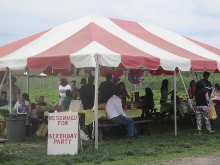 birthday party tent