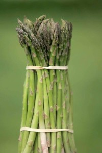 ASPARAGUS_by Aaron Houston