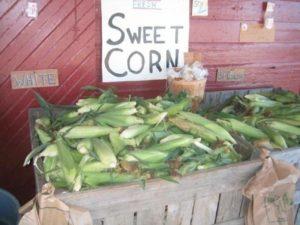 corn stand farm store