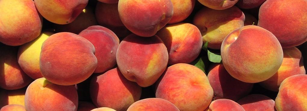 Peaches_HomeSlidelarge