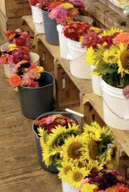 farm store flowers