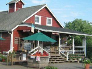 farm store tomato
