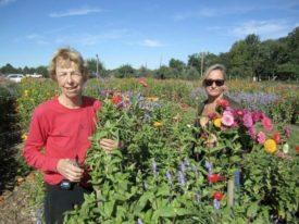 Pam flowers garden Mount Terhune Orchards farm Princeton NJ