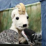 puppetshowscene