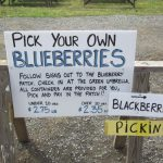 pyo blueberry sign