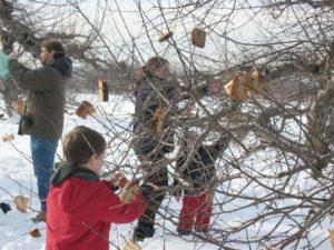 wassail bread tree 2005