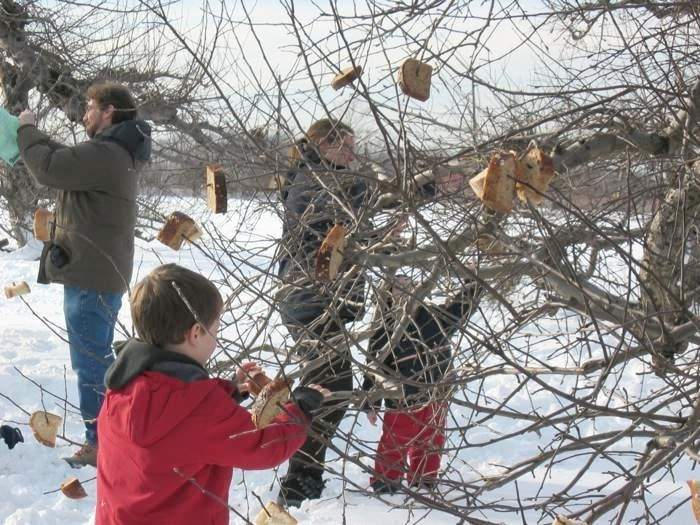 ... at Terhune Orchards this winter. Wassail the apple trees with us