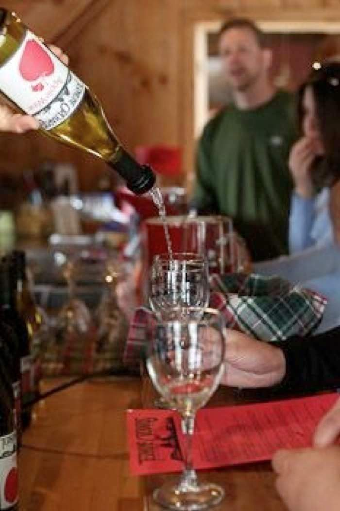 Terhune Orchards tasting room wine pouring