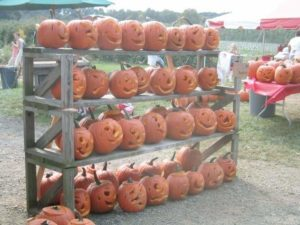world record pumpkins 2005