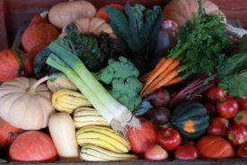 thanksgiving veggies