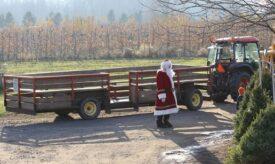 santa tractor rides