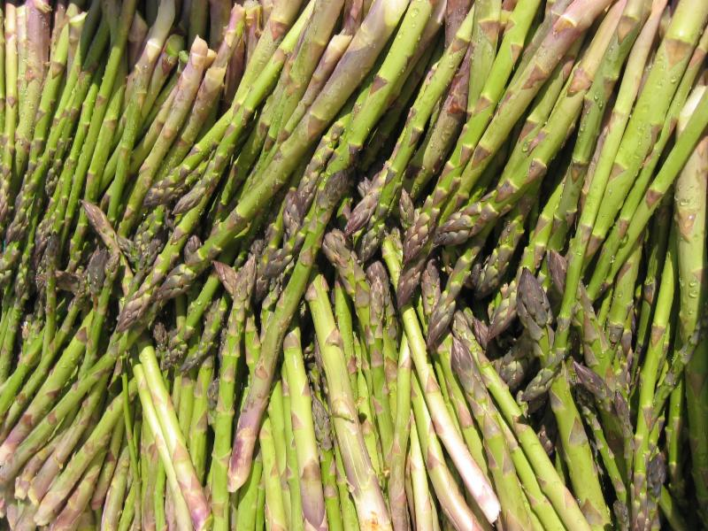lots of asparagus