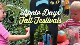 apple days fall festivals