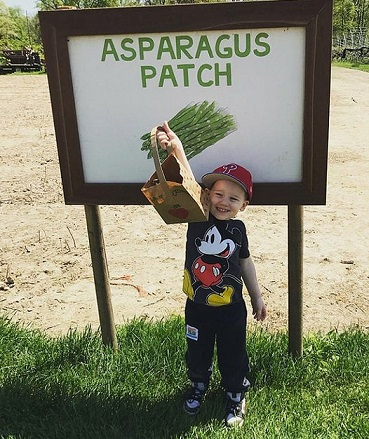 read and pick asparagus small