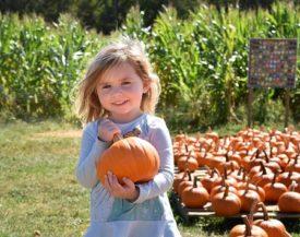 terhune pumpkin pick