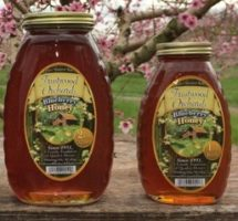 Fruitwood Orchards Blueberry Honey
