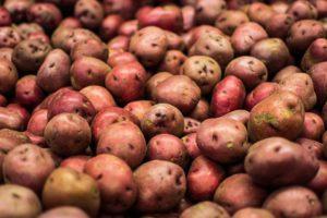 Potato Red New