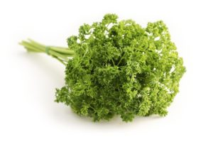 Herb - Parsley curly