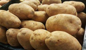 Potato Baking each