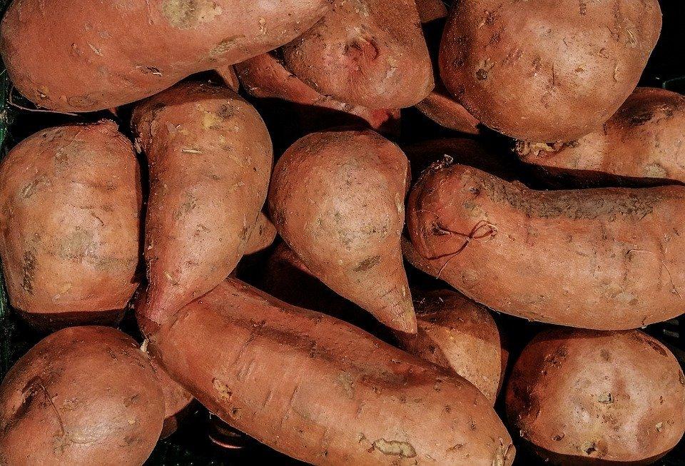 Potato - Yams