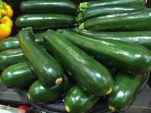 Squash - Zucchini