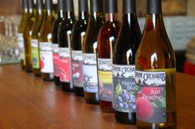 wine bottle row
