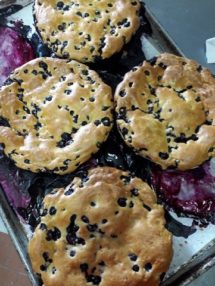 blueberry cobblers