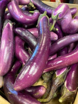 eggplant ichiban