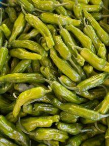 peppers shishito 2