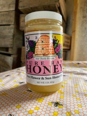 raw honey star thistle blossom