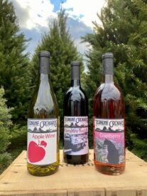 virtual wine trio #1