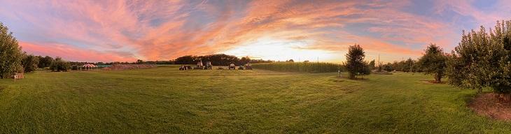 farm sunset panorama