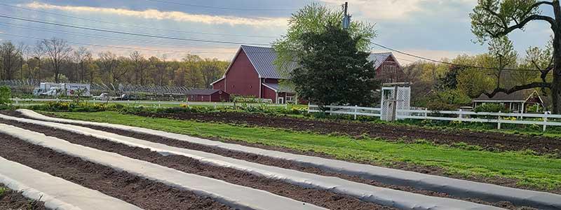 Farming Process