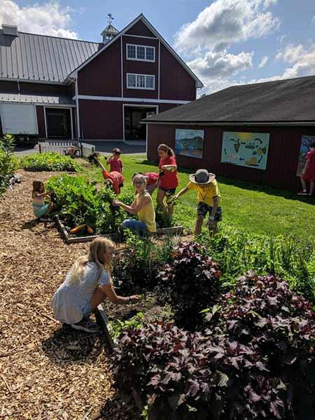 farm camp gardening