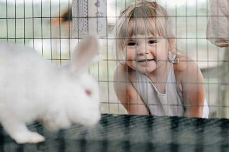 Girl meeting bunny