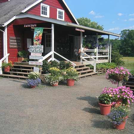 Terhune Farm Store