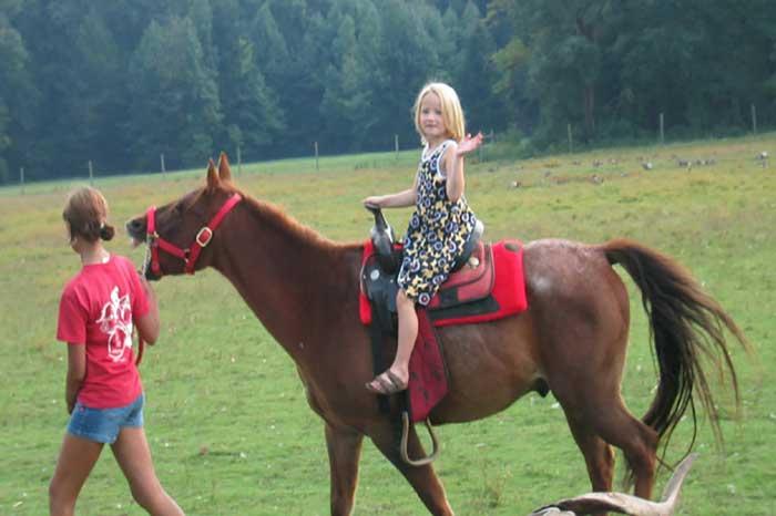 Birthday party pony ride